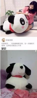 太坑爹了,熊猫的眼睛呢?